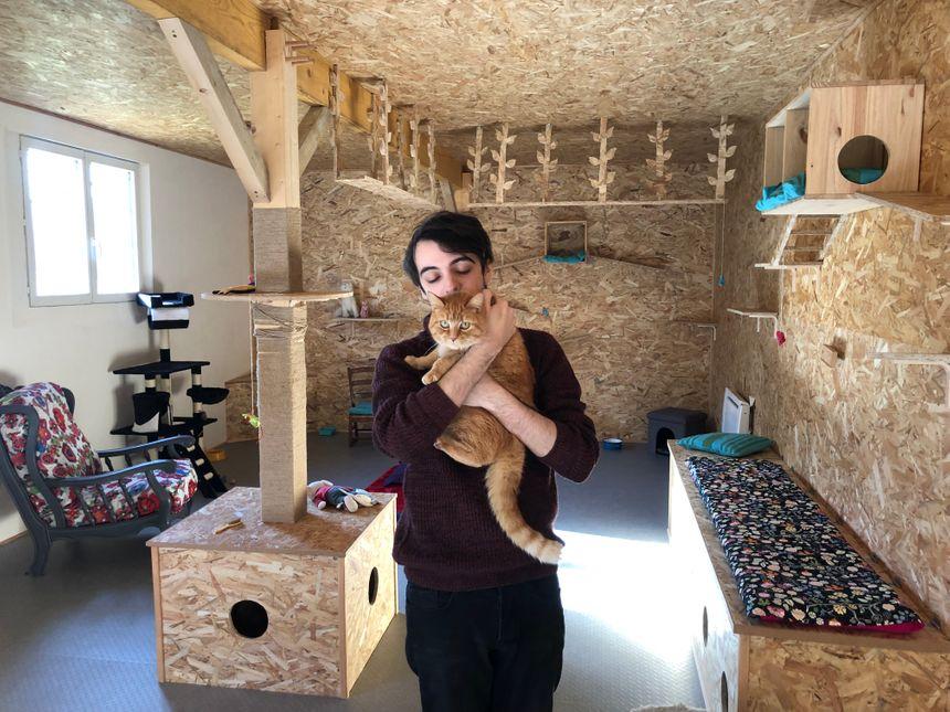 Quentin a entièrement construit une pièce de 40 mètres carré avec notamment des passerelles, des cachettes et des matelas