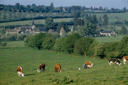 Des chemins pour rapprocher les agricuteurs des citadins