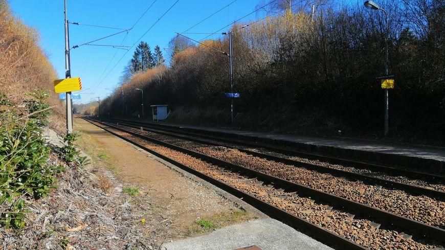 La halte TER de Saint Martin du Vivier va fermer au second semestre 2019