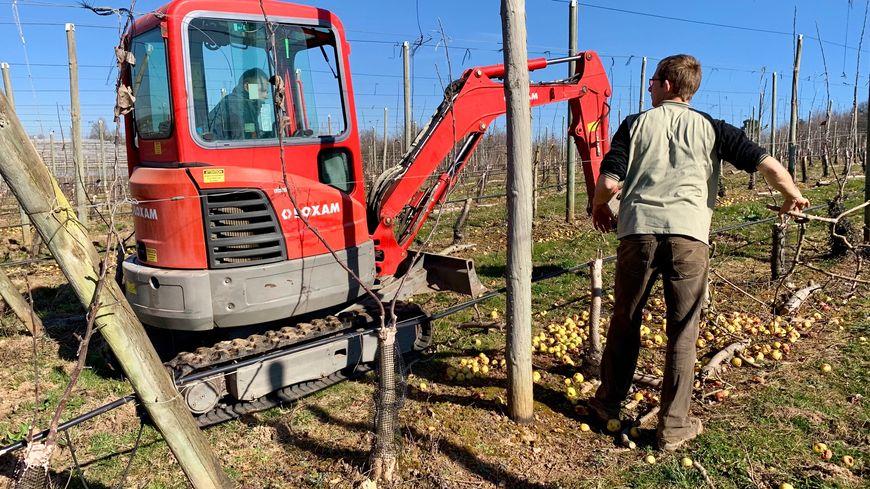 Le beau temps du mois de février a facilité le travail des agriculteurs