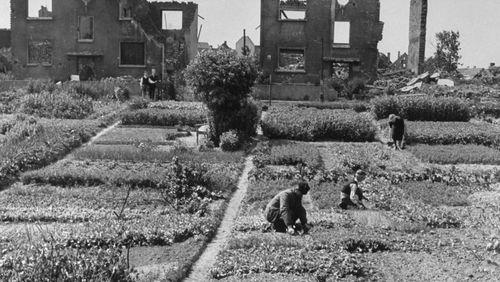 Épisode 2 : 1945. Un champ de ruines