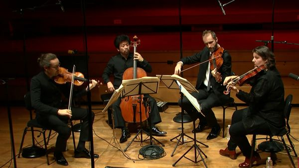 Le Quatuor Cambini joue Haydn