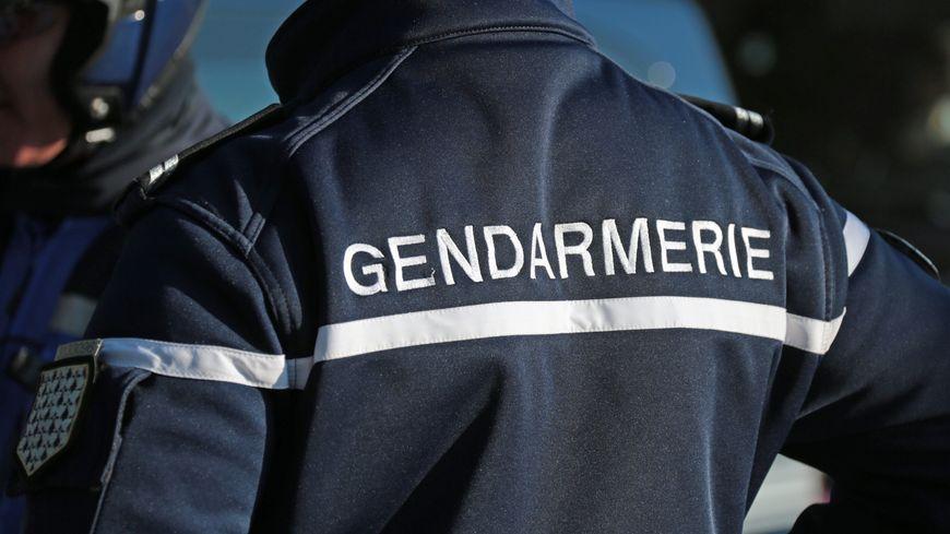 Le flair des gendarmes et la puce du chien ont permis de sauver une septuagénaire