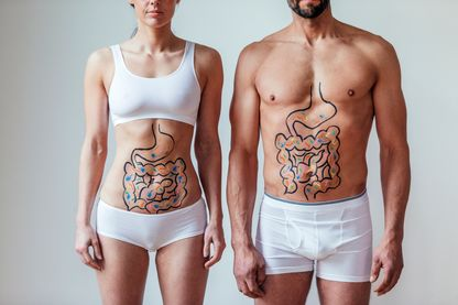 Intestin et microbiote