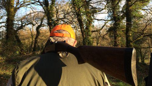 Épisode 1 : Promenons-nous dans les bois, quand le chasseur n'y est pas