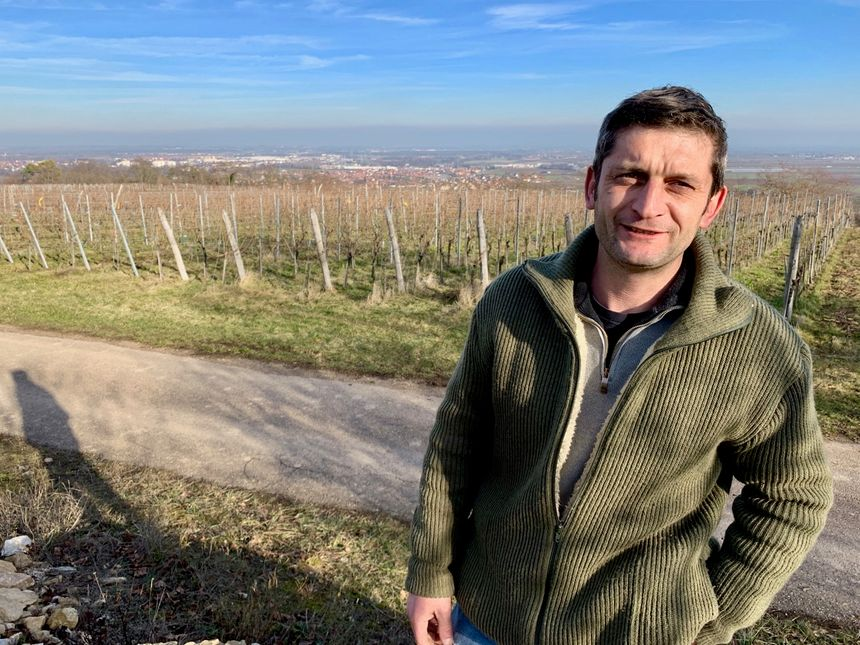 Dorlisheim, Christophe LINDENLAUB, viticulteur