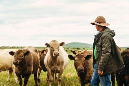 Retour à la ferme : La vie est dans le pré ?