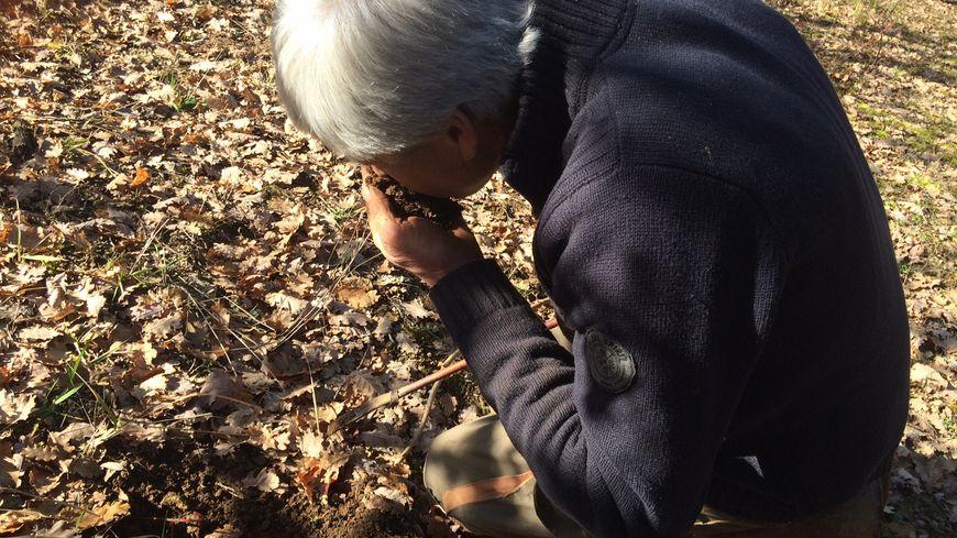 Jean Marie Chanquoi dans sa truffière à Grèzes