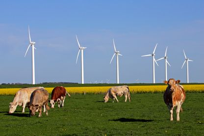 L'inquiétant mystère des éoliennes de Nozay