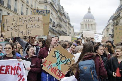 Grande Marche pour le climat, à Paris, le 15 mars 2019