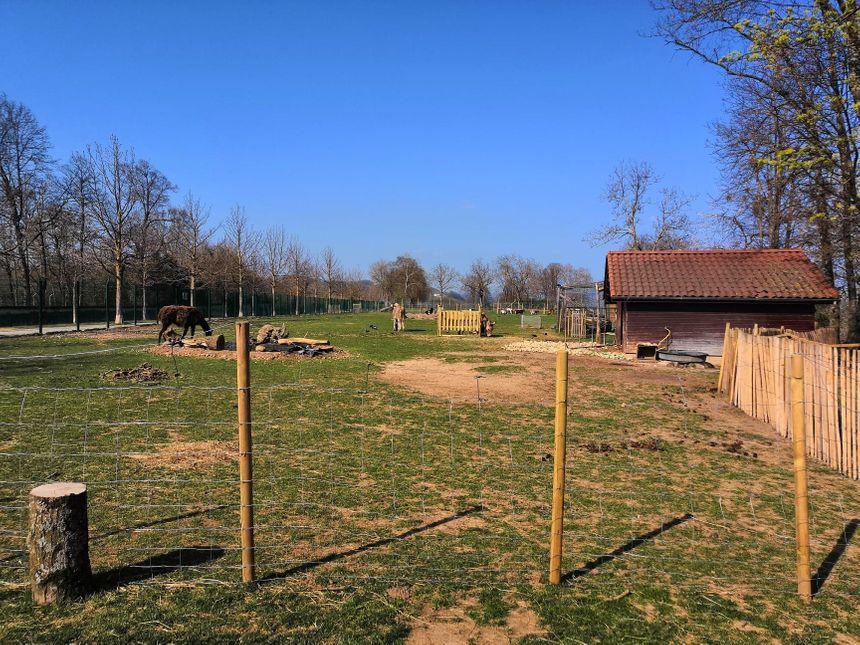 Depuis le changement de gestionnaire, le parc de Joud a subi de nombreux aménagements qui ne sont pas du goût de tous les promeneurs