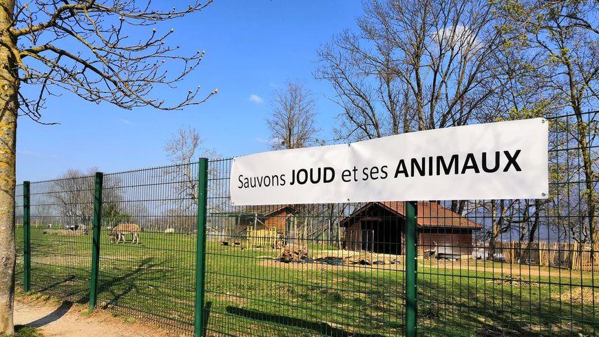 Un collectif s'est monté pour demander des explications à la mairie concernant la mort du cerf et l'avenir des autres animaux