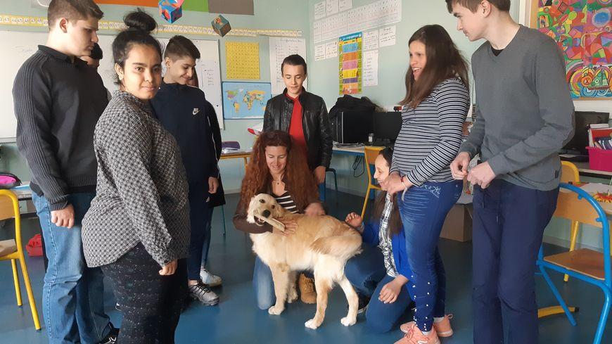 La chienne Oasis est désormais un membre à part entière du travail mené dans cette classe Ulis composée d'élèves de la sixième à la troisième