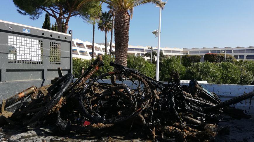 Des vélos, des chaises, des chariots et même un scooter: les plongeurs ont trouvé toutes sortes de choses dans le port