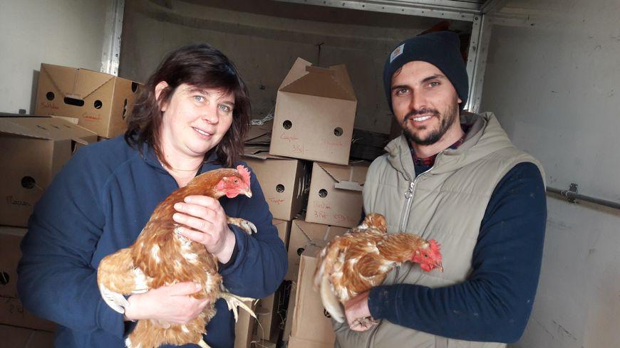 Thomas Dano a livré une centaine de poules chez Annabelle à Mobecq, près de La Haye.