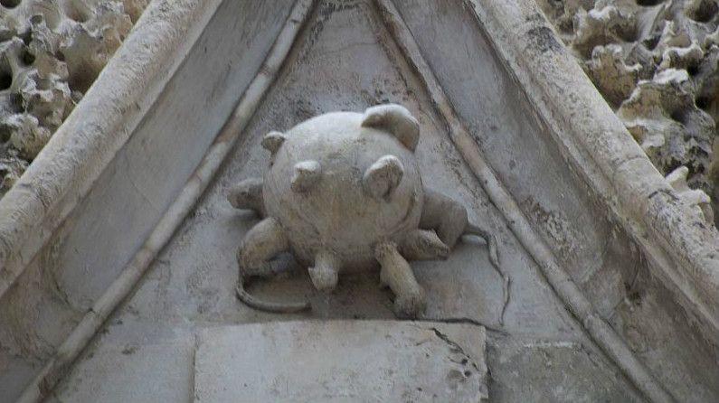 La boule-aux-rats de la cathédrale de Carpentras