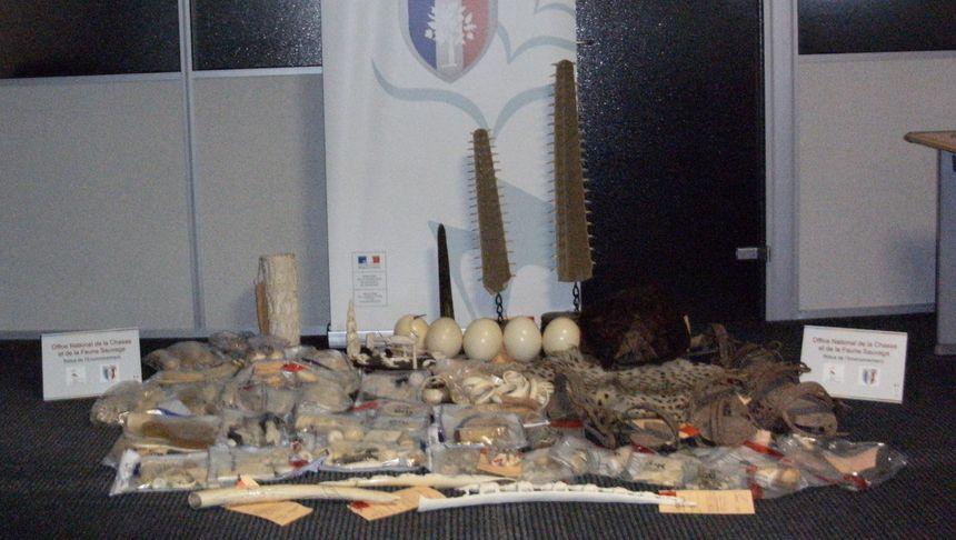 Œufs d'autruche, défenses d'éléphants, peau de guépard, objets en ivoire, carapace de tortue marine : une partie des saisies de l'année 2018.