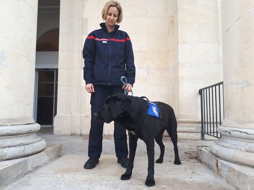 LOL, le premier chien d'assistance judiciaire en France aide à libérer la parole des victimes 860_lol_le_1er_chein_dassistance_judiciaire_a_cahors_3