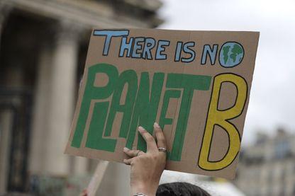 """Lors de la manifestation pour l'environnement le 15 mars 2019, une pancarte affiche """"There is no planet B"""" : """"il n'y a pas de planète B""""."""