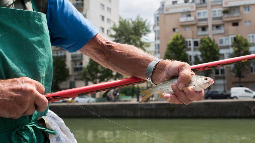 Un pêcheur au bord du bassin de la Villette à Paris (19e).