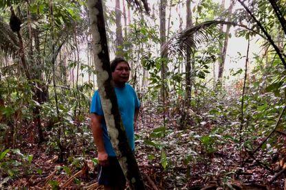 Les Amérindiens se battent pour défendre la forêt dont ils vivent