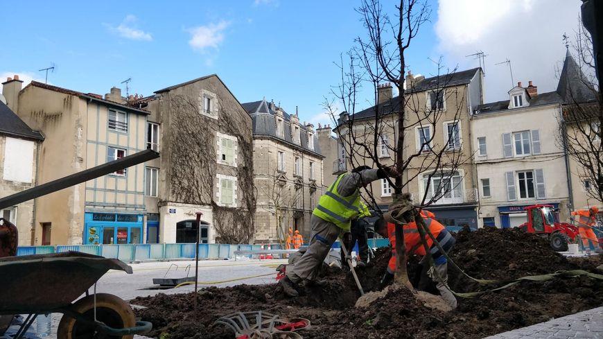 Rénovation de la place Charles VII à Poitiers