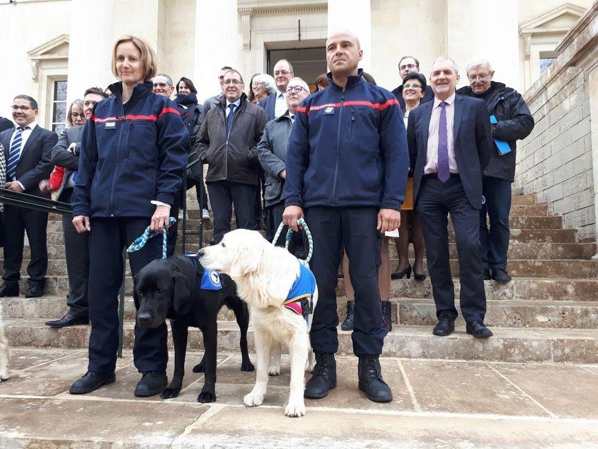 LOL, le premier chien d'assistance judiciaire en France aide à libérer la parole des victimes 860_lol_le_1er_chien_dassistance_judiciaire_a_cahors_2