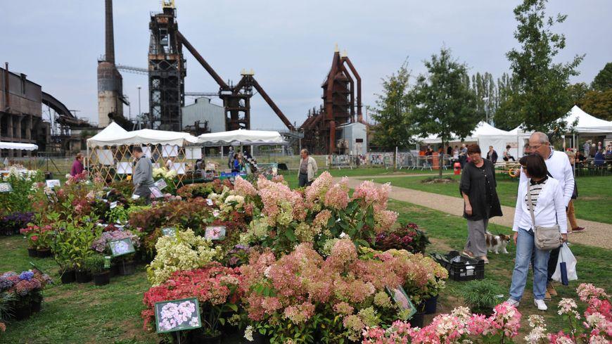 La fête des plantes au jardin des traces à Uckange en 2015