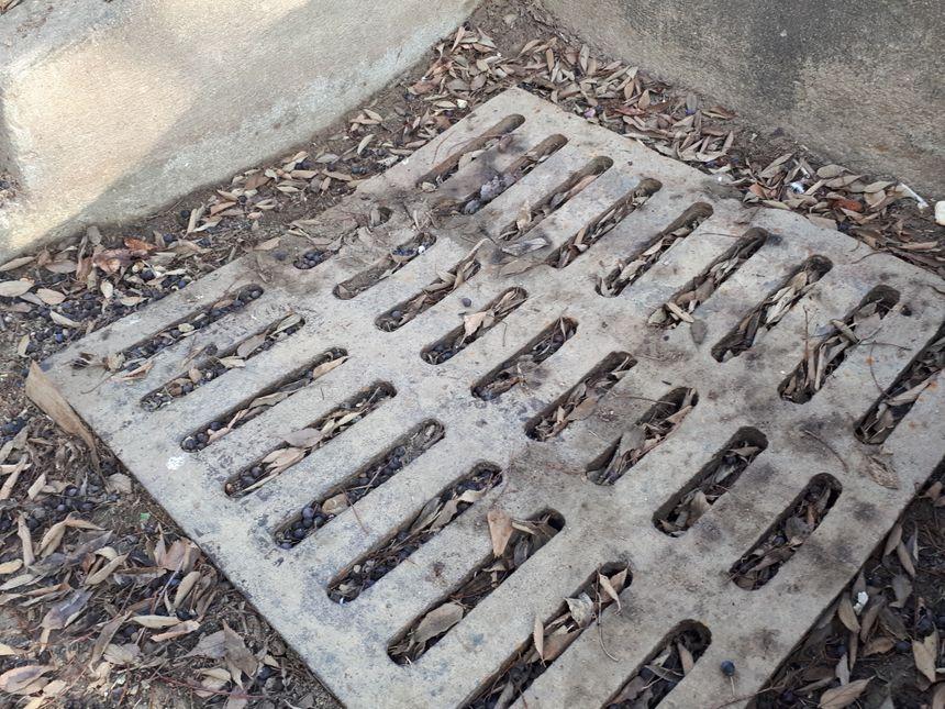 Les plaques d'égout bouchées provoquent des inondations les jours de pluie.