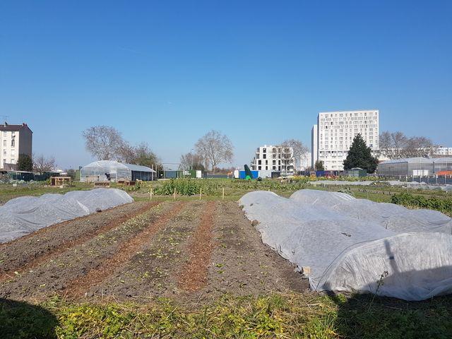 """Ferme urbaine de Seine-Saint-Denis, """"Zone Sensible"""", centre de production d'art et de nourriture, créé en 2018"""