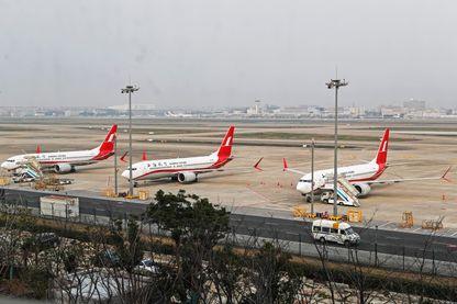 Après le crash d'un Boeing 737 Max 8 de la compagnie Ethiopian Airlines, plusieurs pays ont exigé le maintien au sol des appareils.