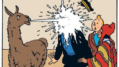 Les Aventures de Tintin : le Temple du soleil (2/5) : Le petit marchand d'oranges