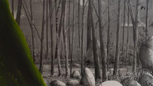 Semaine spéciale Art et Nature (4/5) : Figurer l'invisible avec les paysages troués de David Lefebvre