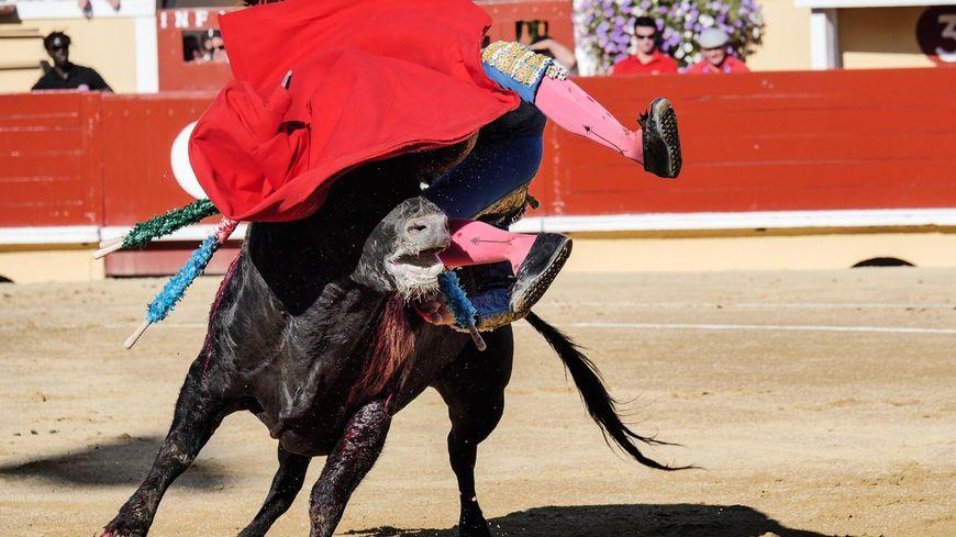 Le torero Thomas Joubert blesse dans les arènes de Bayonne le premier septembre 2018