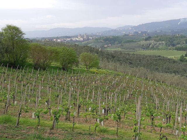 Les collines du Montalbano et le village natal de Léonard, Vinci, ont largement inspiré le maître de la Renaissance.