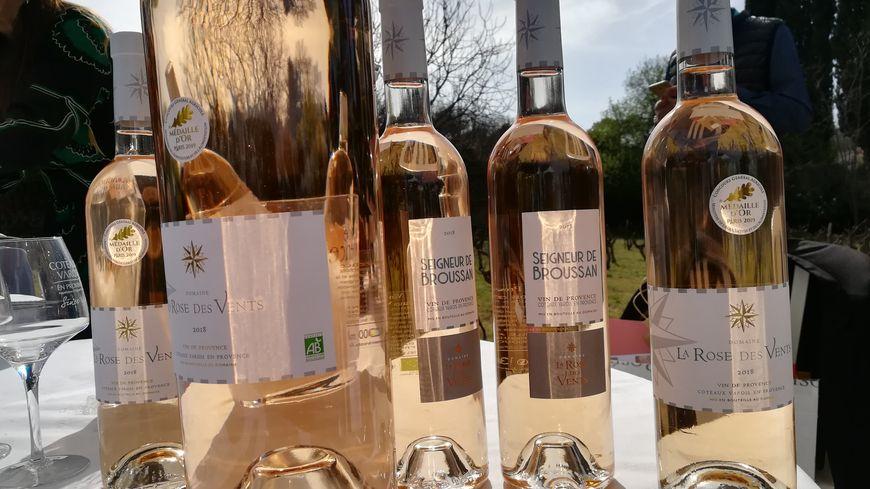 Les viticulteurs de l'AOC Coteaux Varois ont présenté leur millésime 2018 à La Celle