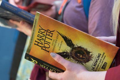 Les livres de la saga Harry Potter dans le viseur de religieux en Pologne.