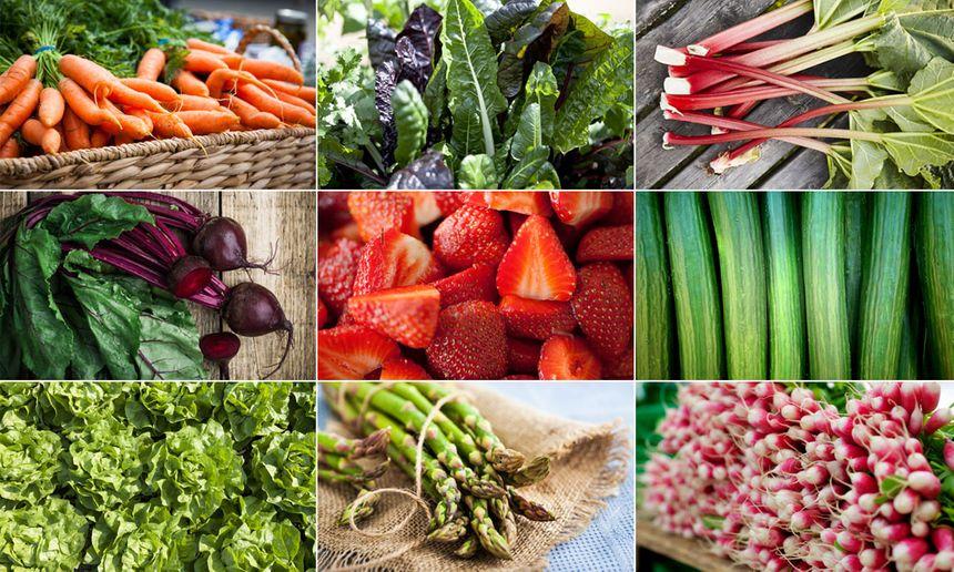 Concombre, radis, bettraves... Quels fruits et légumes consommer au mois de mai ?