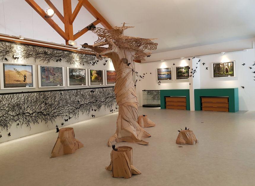 L'exposition sur l'environnement au milieu des créations en carton et papier.