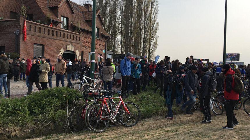 Paris-Roubaix : au carrefour de l'arbre.