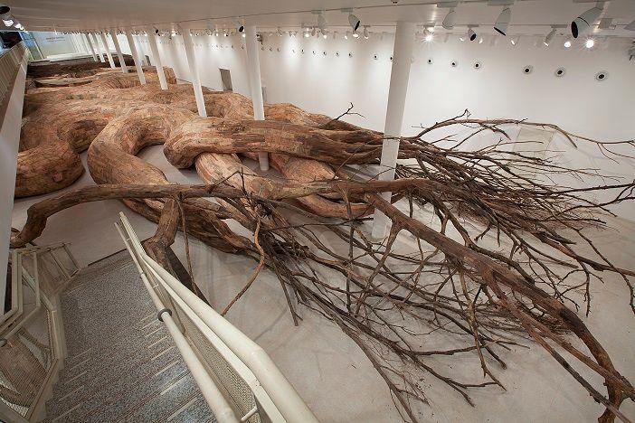 D'intriguantes racines vont vous accueillir aux jardins suspendus.