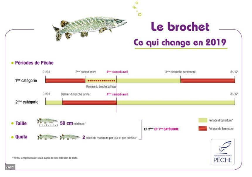 La pêche au Brochet, ce qui change