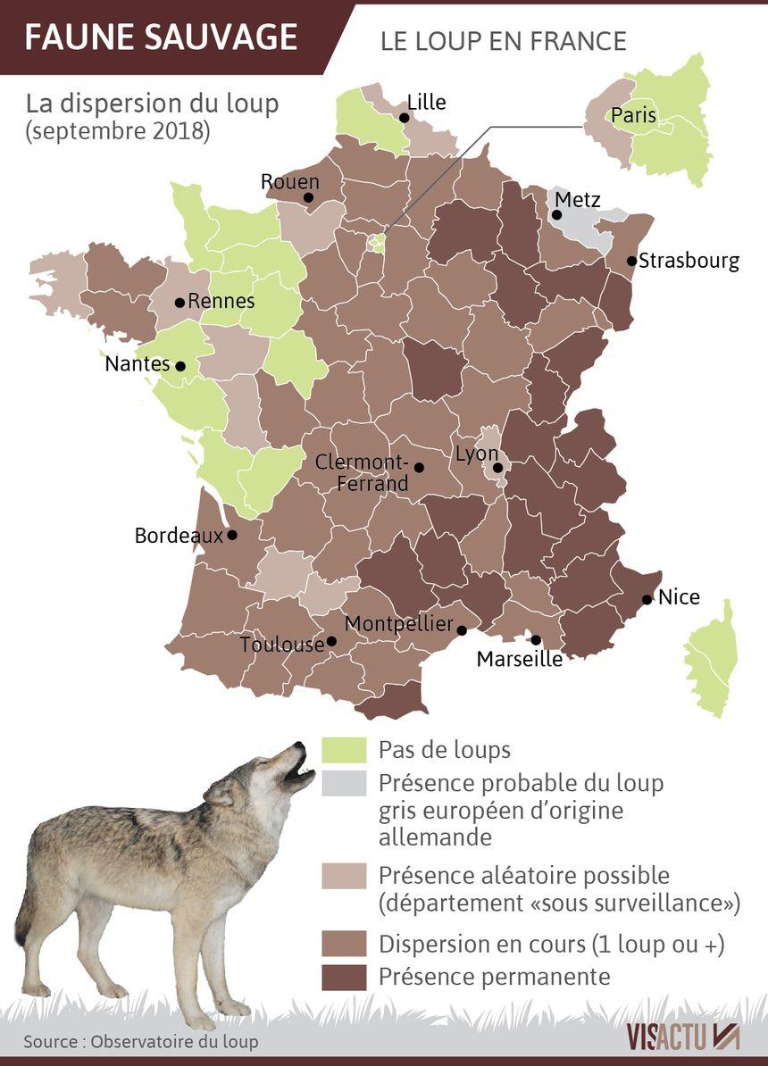 La présence du loup en France (état des lieux septembre 2018).