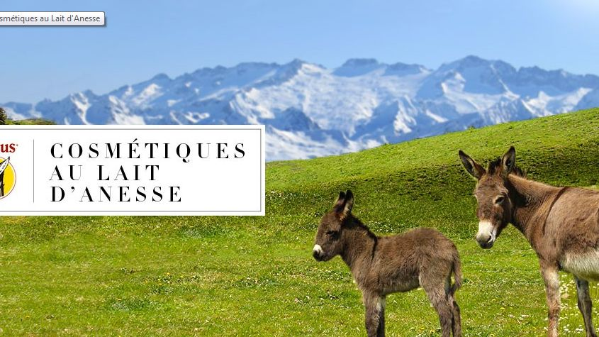 L'entreprise à Saint-Girons (Ariège) exporte des savons en Asie.