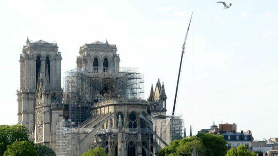 Notre-Dame de Paris, après l'incendie