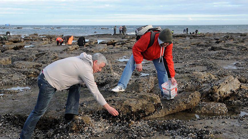 Les grandes marées font la joie des pêcheurs à pied. Mais la préfecture maritime appelle à une grande prudence ce week-end de Pâques