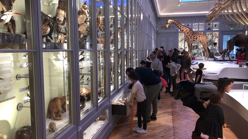 Catherine, Alexandre, Françoise, Sylvain et Lucas prennent leur mal en patience avant de pénétrer dans le Museum de Bordeaux.