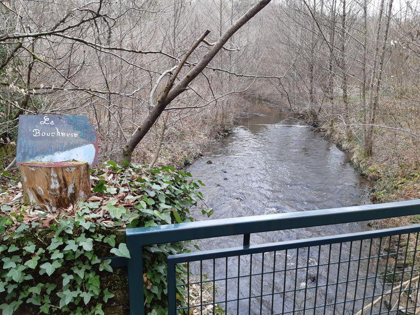 De l'autre côté de cette rivière, des hectares de chemins et de forêt qui font le bonheur des promeneurs