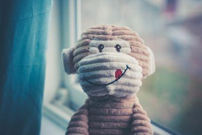Doudou à la fenêtre