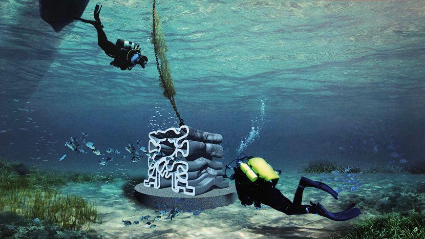 Les récifs artificiels vont être réalisés grâce à des imprimantes 3D